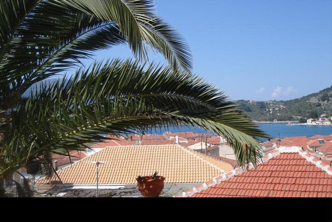 Accommodation on Ithaca, view and palm tree